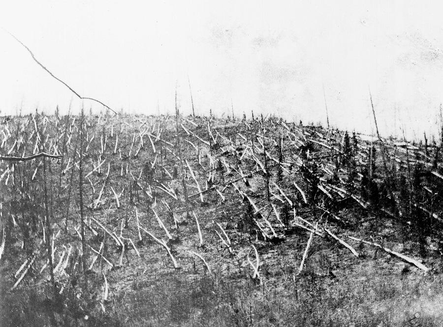 Вывал леса 1908 года. Фотография из первой экпедиции ученого секретаря Комитета по метеоритам Л.А. Кулика Предоставлено ГПЗ Тунгусский