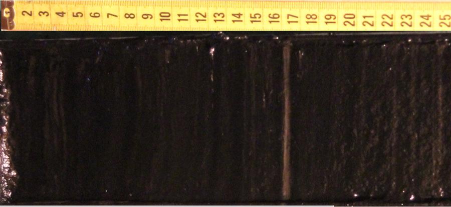 Поверхность вскрытого керна оз. Заповедное